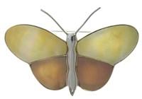 "Brosche  ""Butterfly"" gelb/golden"
