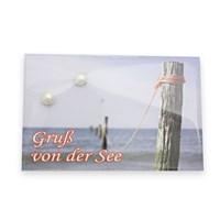 """Ohrstecker """"Gruß von der See"""""""